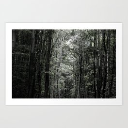 rbdlc 001 Art Print