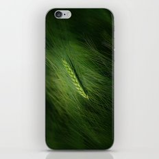 Getreide  iPhone & iPod Skin