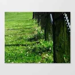 Green No.2 Canvas Print