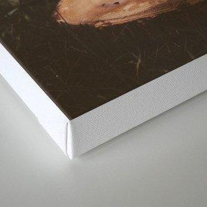 Splash of Coffee Canvas Print