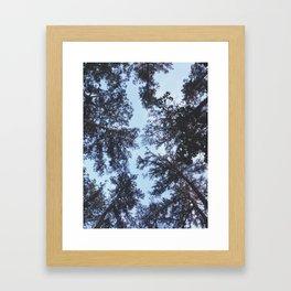 Tops Framed Art Print