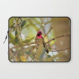 Hummingbird Beauty Laptop Sleeve