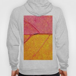 the leaf close up view - beautiful nature photo Hoody