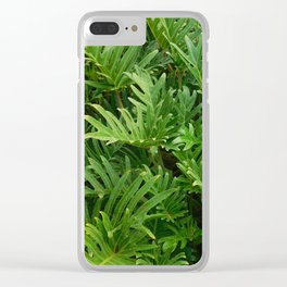 Green fronds after rain are relaxing Clear iPhone Case