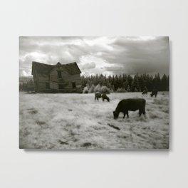 Nuttby House Metal Print