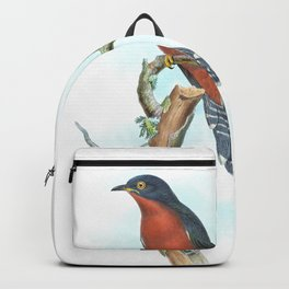 Chestnut Breasted Cuckoo, tropical bird in the nature of Australia & Indonesia Backpack