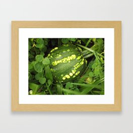 Pumpkin Decorative Green Framed Art Print
