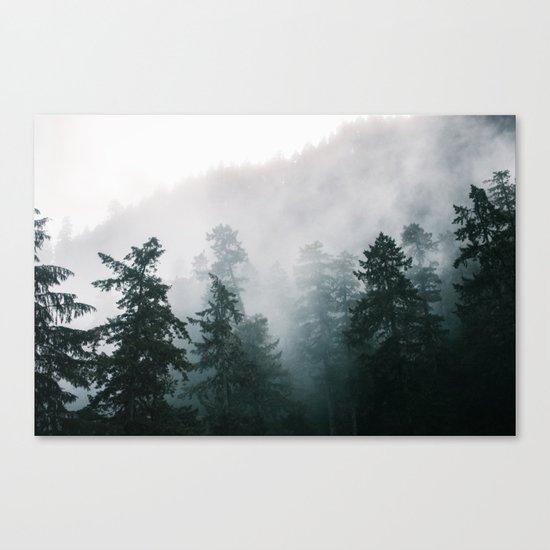Forest Fog IX Canvas Print
