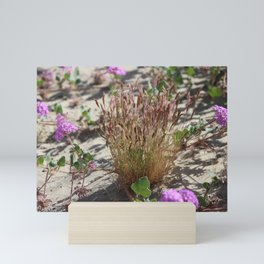 Wild Grass and Purple Verbena at Coachella Wildlife Preserve Mini Art Print