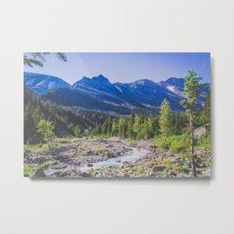 Canyon Creek, Montana Metal Print