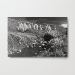 Fence across Cataract Creek Metal Print