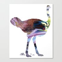 ostrich Canvas Prints featuring Ostrich  by FurittusDesigns