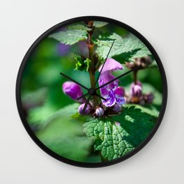 Photo of Ground-ivy flower on a green background taken in Austrian Alps Wall Clock