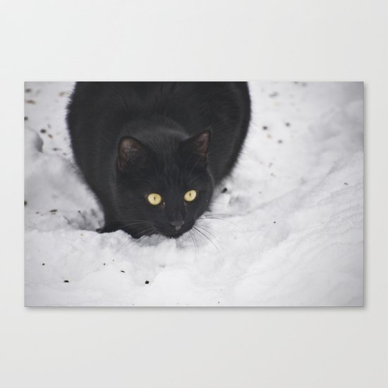 Black cat in a snow Canvas Print