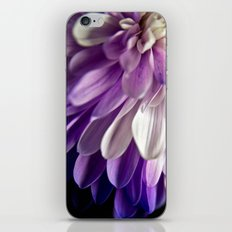 Burst of Purple  iPhone & iPod Skin