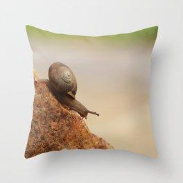 Snail Mountain Throw Pillow