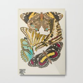 Butterfly and Moth Print by E.A. Seguy, 1925 #14 Metal Print