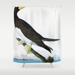 12,000pixel-500dpi - Booby Gannet - John James Audubon Shower Curtain
