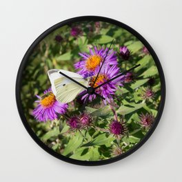 Cabbage Butterfly on Purple Aster Wall Clock