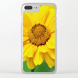 Raw Like A Sun Clear iPhone Case