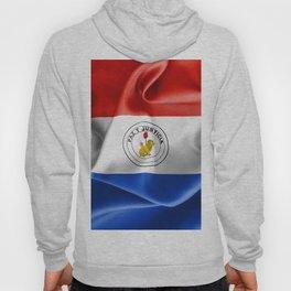 Paraguay Flag Reverse Side Hoody