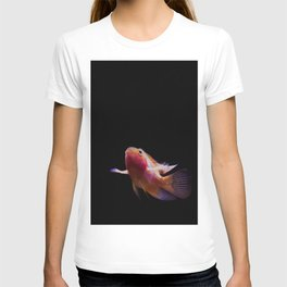 the flight of the red goldfish T-shirt