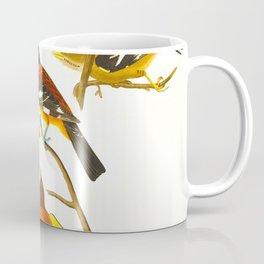 Evening grosbeak John James Audubon Vintage Birds Of America Illustration Coffee Mug