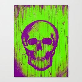 Braincase Canvas Print