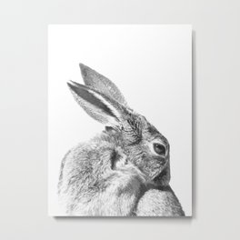Black and white rabbit Metal Print