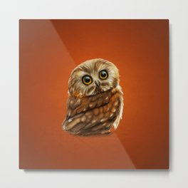 The Owls Eyes Metal Print