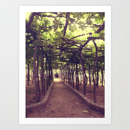 Lemon Grove in Ravello, Italy Art Print