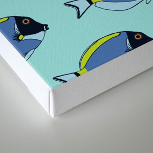 Powder blue surgeon fish pattern Canvas Print