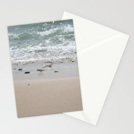 Seashore Sandpipers in tideland Stationery Cards