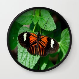 Perched Doris Longwing Butterfly Wall Clock