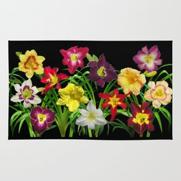 Display of daylilies I Rug