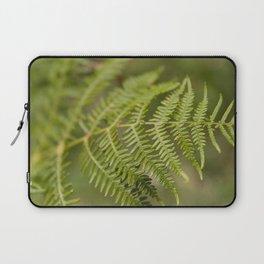 Fern - Osmunda Regalis Laptop Sleeve