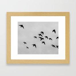 birds flying away Framed Art Print