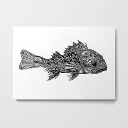 A Surly Rockfish - Atlantic Thornyhead-Longspine Metal Print