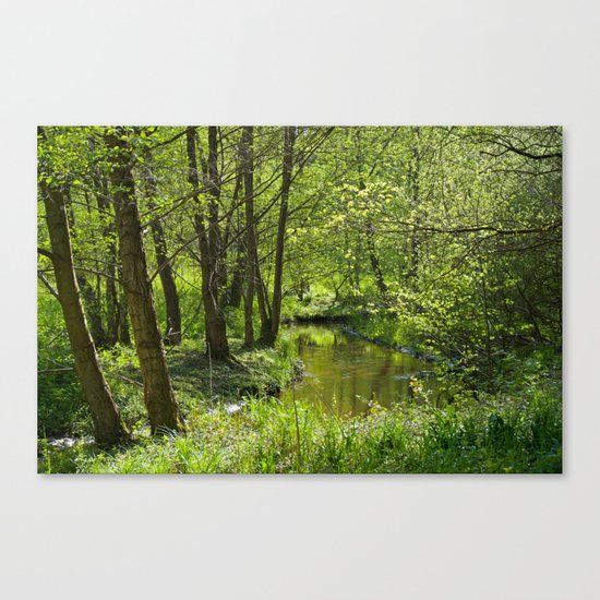 Idyllic scenery Canvas Print