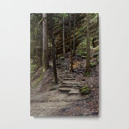 steps in the forest Metal Print