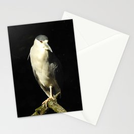 Between Shadows and Light Stationery Cards