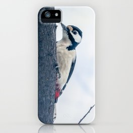 Great spotted woodpecker iPhone Case