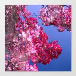 pink tree XI Canvas Print