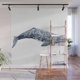 Grey whale Wall Mural