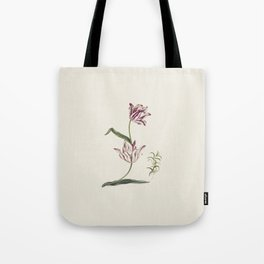Botanical illustration of tulips and one lily Tote Bag