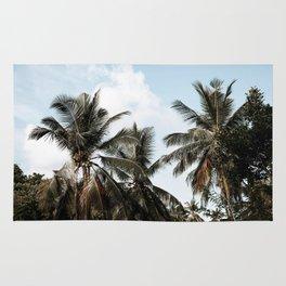 palm trees ii / sri lanka Rug