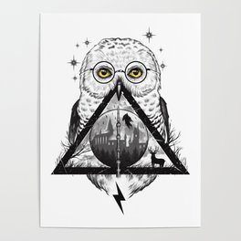 Owls and Wizardry Poster