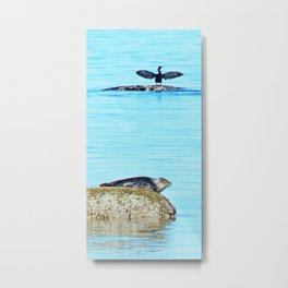 Seal pup and Cormorant getting some Sun  Metal Print