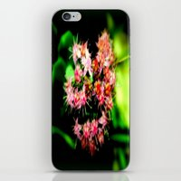 cacti iPhone & iPod Skins featuring Cacti by Chris' Landscape Images & Designs