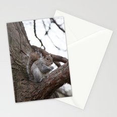 Squirrel with peanut Stationery Cards